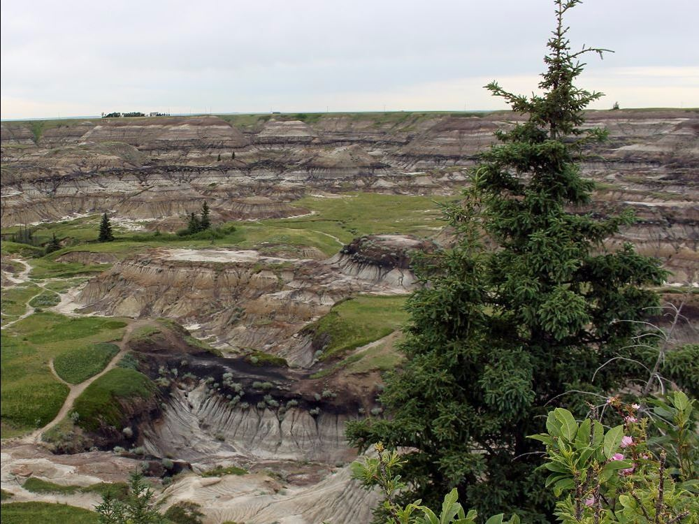 Horseshoe Canyon 2