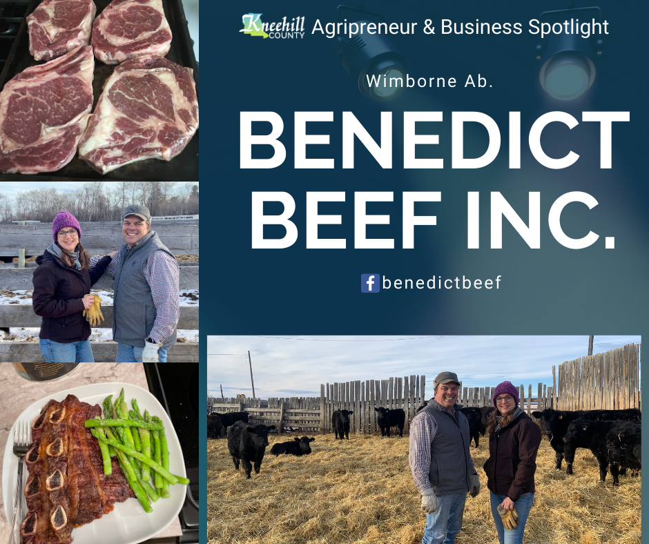 Benedict Beef Agripreneur Business Spotlight