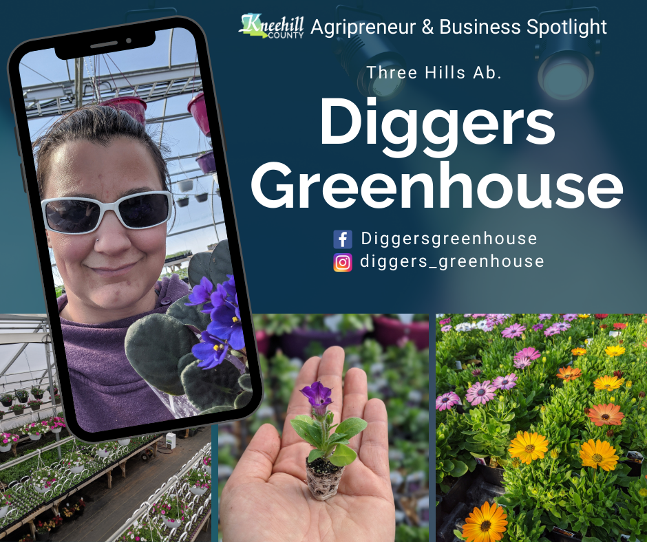 Diggers Greenhouse