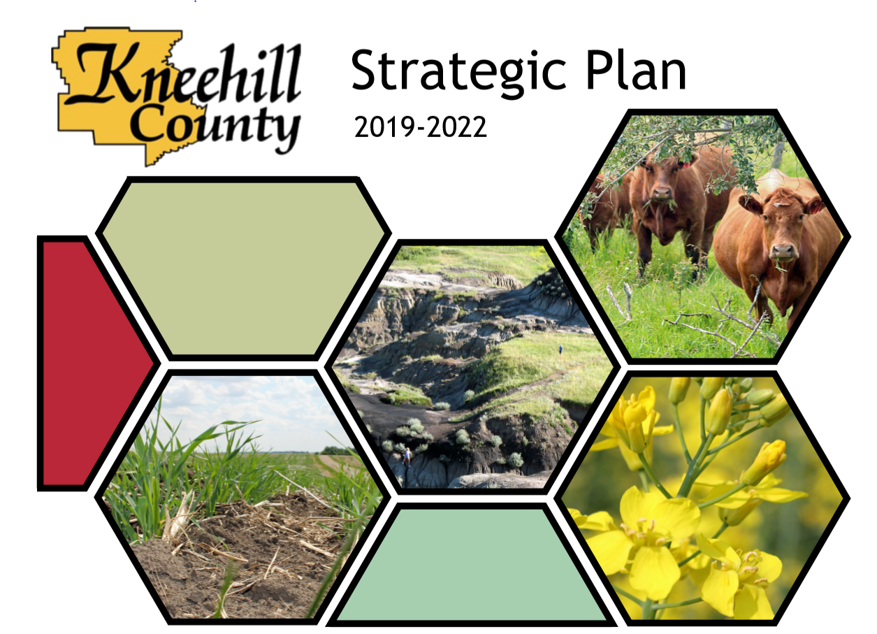 Strategic Plan Opens in new window